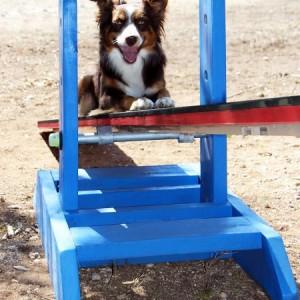 Build an Adjustable Agility Dog Teeter Base