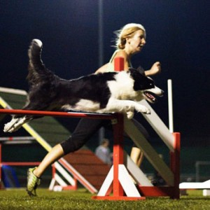 Silvia Trkman Running for fun!